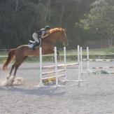 hester2